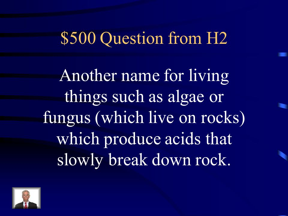 $500 Question from H2 Another name for living things such as algae or fungus (which live on rocks) which produce acids that slowly break down rock.