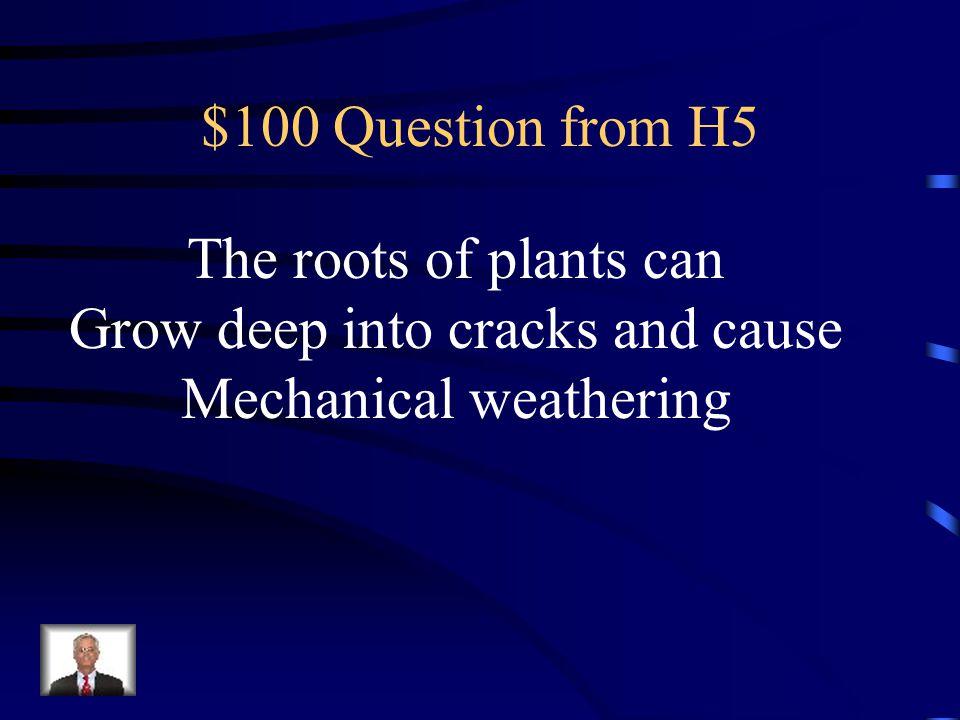 Grow deep into cracks and cause Mechanical weathering