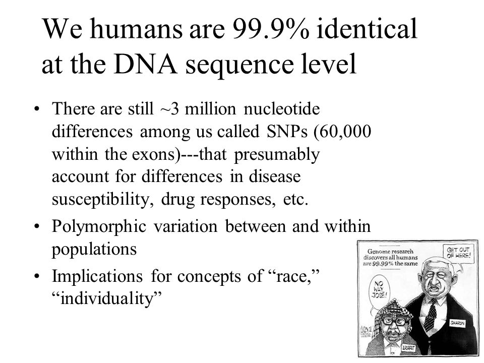 We humans are 99.9% identical at the DNA sequence level