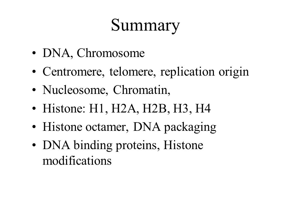 Summary DNA, Chromosome Centromere, telomere, replication origin