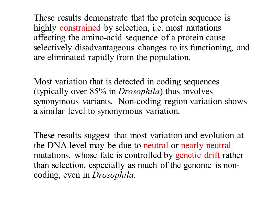 These results demonstrate that the protein sequence is highly constrained by selection, i.e. most mutations affecting the amino-acid sequence of a protein cause selectively disadvantageous changes to its functioning, and are eliminated rapidly from the population.