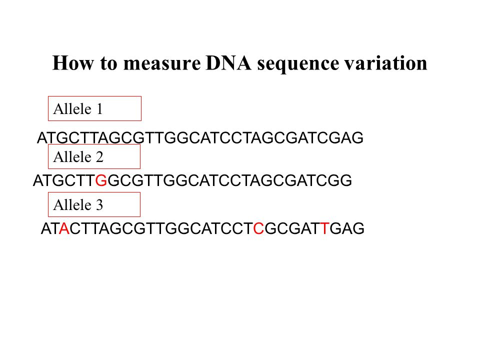 How to measure DNA sequence variation