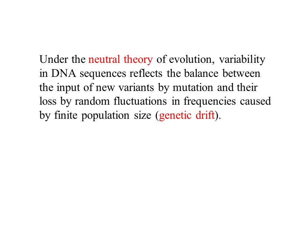 Under the neutral theory of evolution, variability in DNA sequences reflects the balance between the input of new variants by mutation and their loss by random fluctuations in frequencies caused by finite population size (genetic drift).