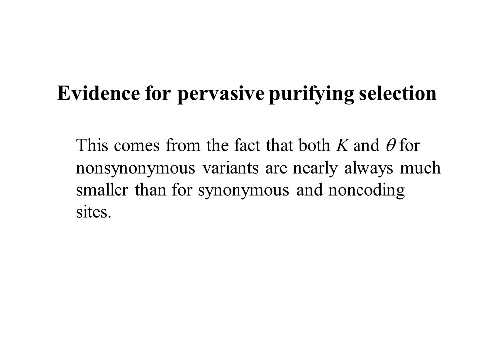 Evidence for pervasive purifying selection