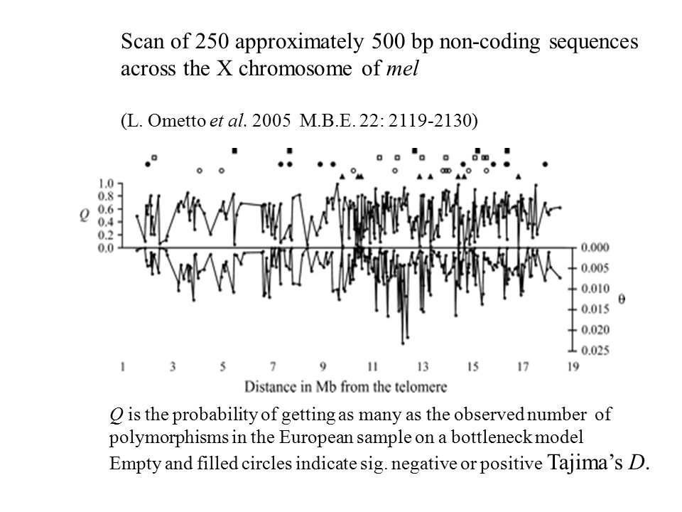 Scan of 250 approximately 500 bp non-coding sequences