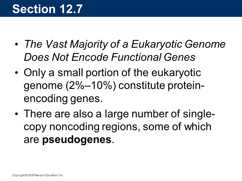 Section 12.7 The Vast Majority of a Eukaryotic Genome Does Not Encode Functional Genes.