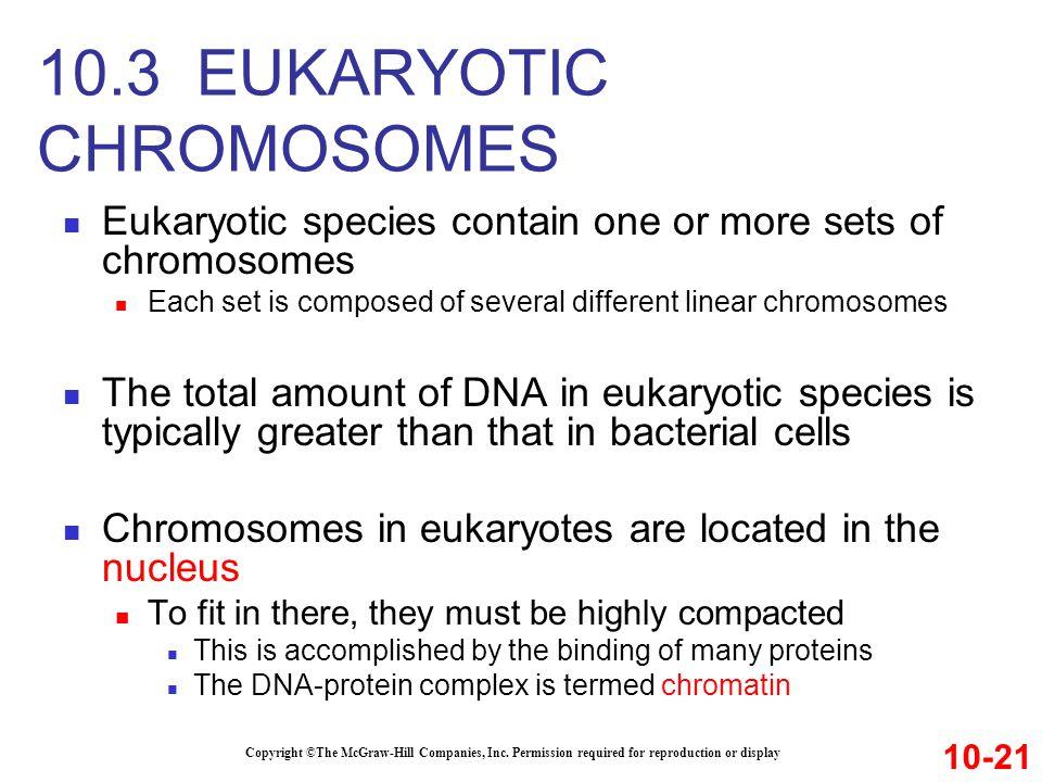 10.3 EUKARYOTIC CHROMOSOMES