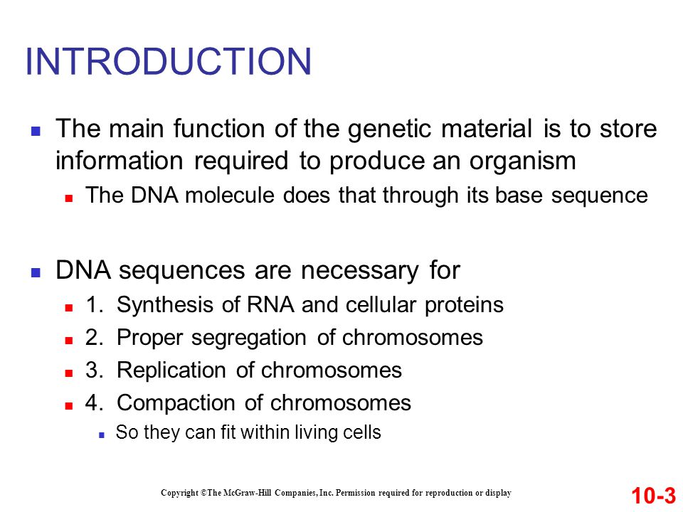 INTRODUCTION The main function of the genetic material is to store information required to produce an organism.