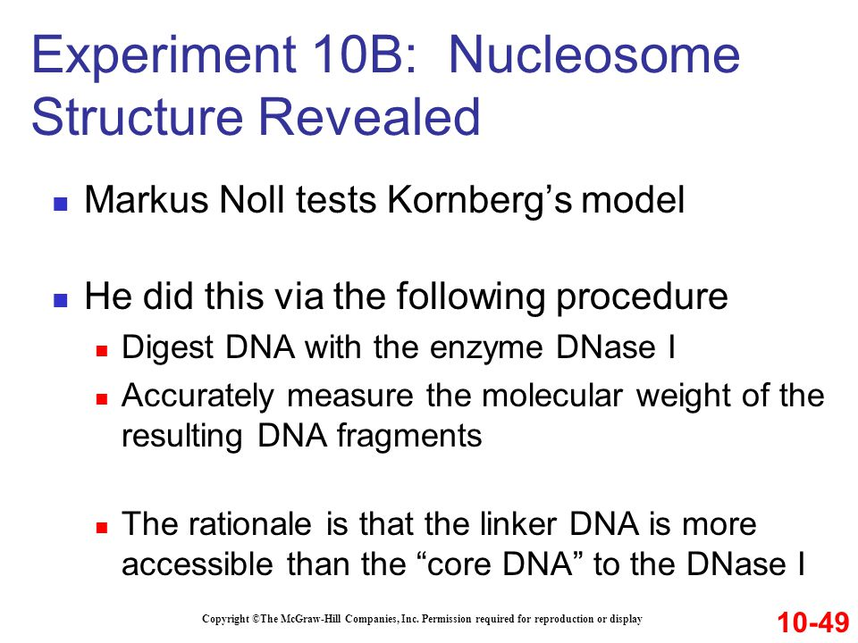 Experiment 10B: Nucleosome Structure Revealed