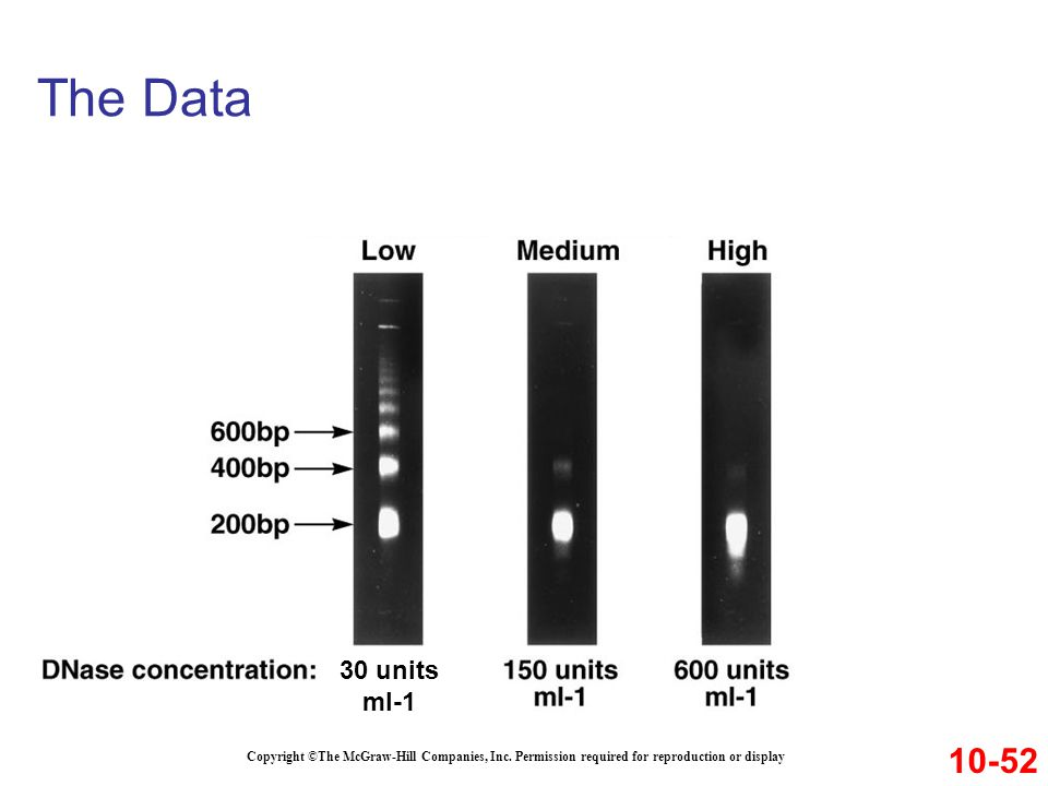 The Data 30 units. ml-1. 10-52. Copyright ©The McGraw-Hill Companies, Inc.