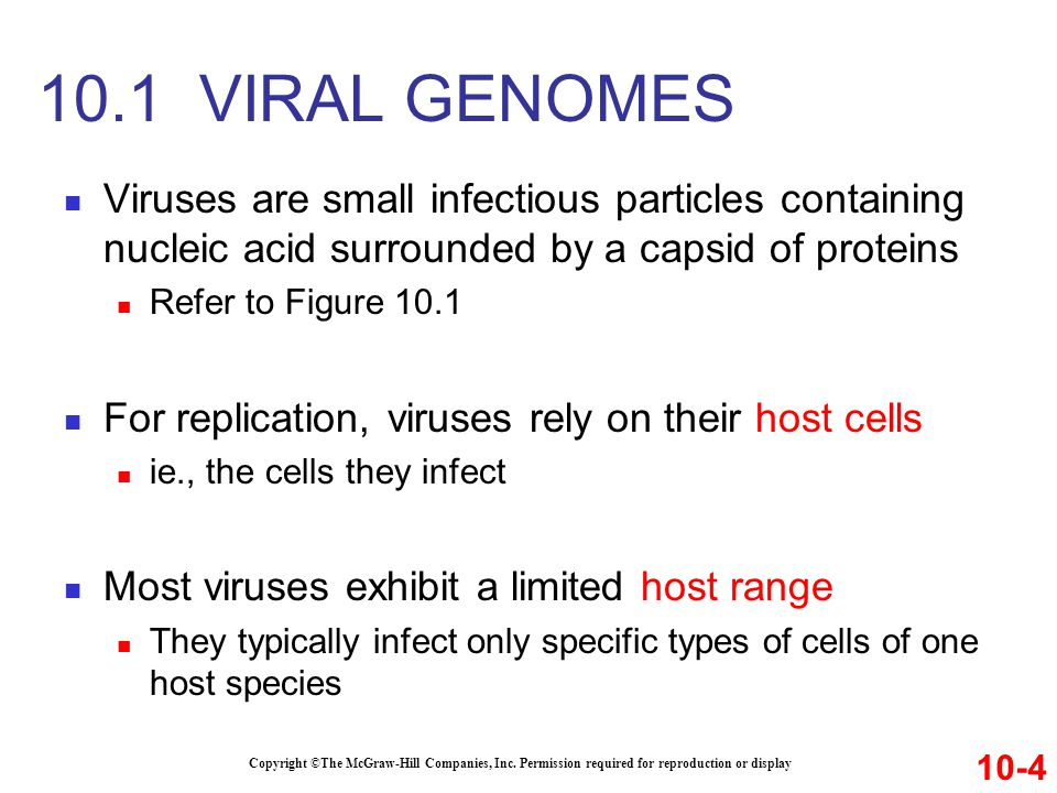 10.1 VIRAL GENOMES Viruses are small infectious particles containing nucleic acid surrounded by a capsid of proteins.