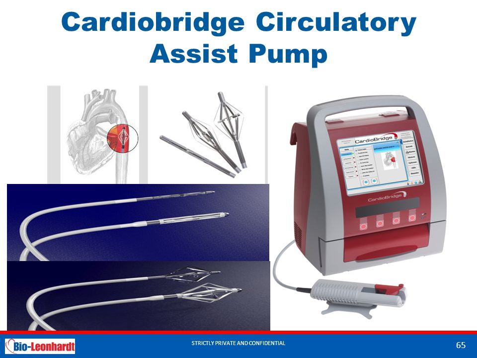 Cardiobridge Circulatory Assist Pump