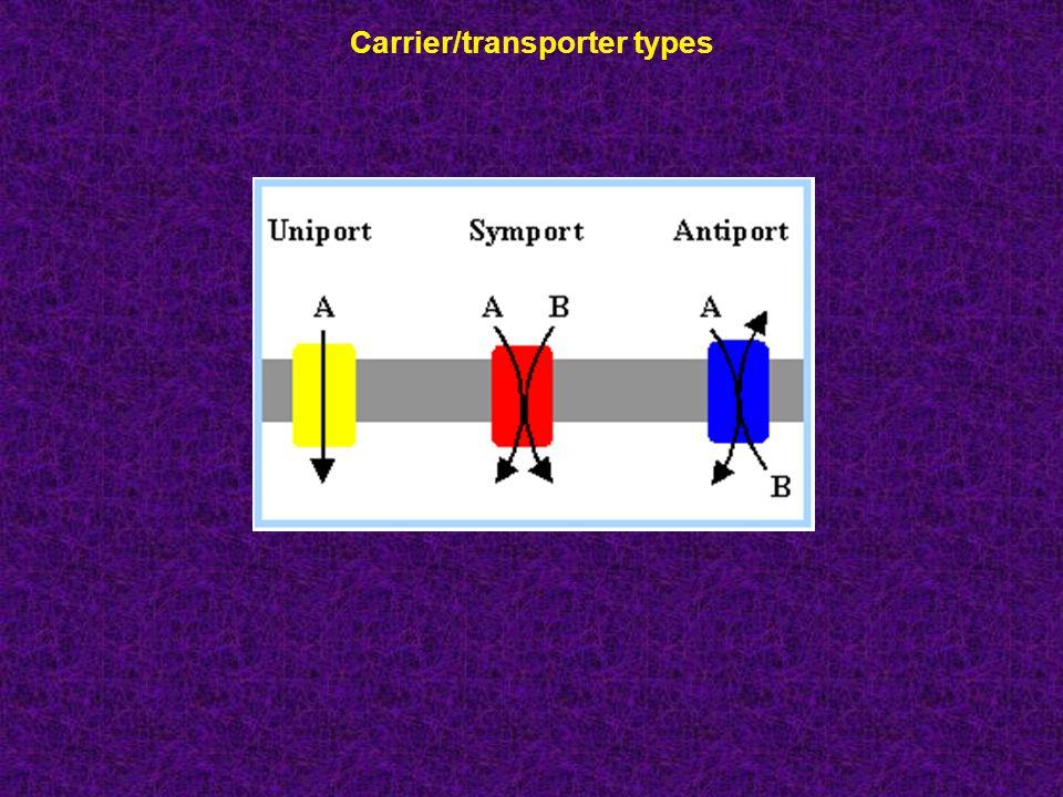 Carrier/transporter types