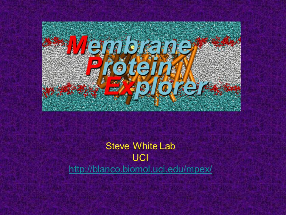 Steve White Lab UCI http://blanco.biomol.uci.edu/mpex/