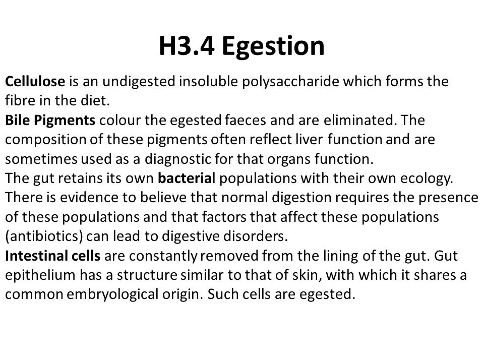 H3.4 Egestion Cellulose is an undigested insoluble polysaccharide which forms the fibre in the diet.