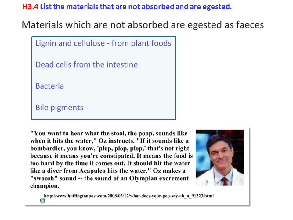 H3.4 List the materials that are not absorbed and are egested.