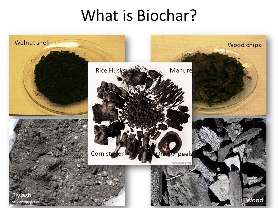 What is Biochar Walnut shell Wood chips Rice Husks Manure Corn stover
