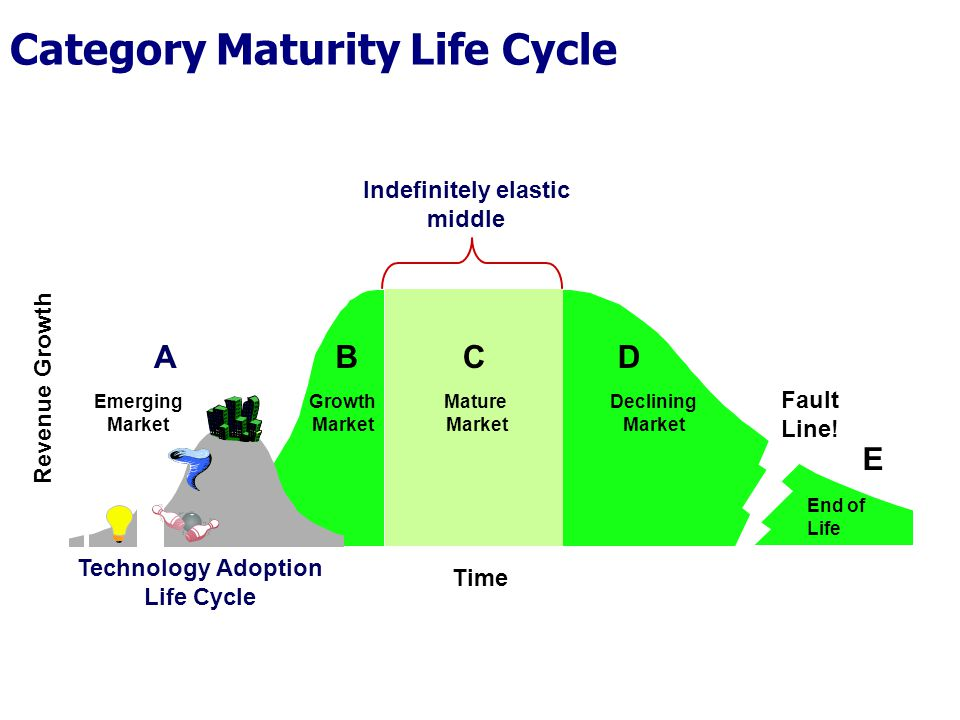 Category Maturity Life Cycle