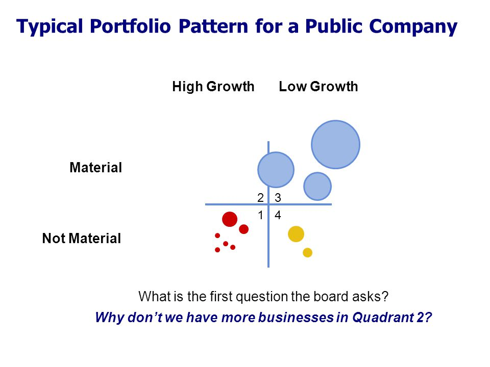 Typical Portfolio Pattern for a Public Company