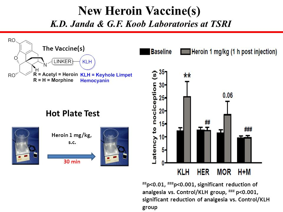 New Heroin Vaccine(s) K.D. Janda & G.F. Koob Laboratories at TSRI
