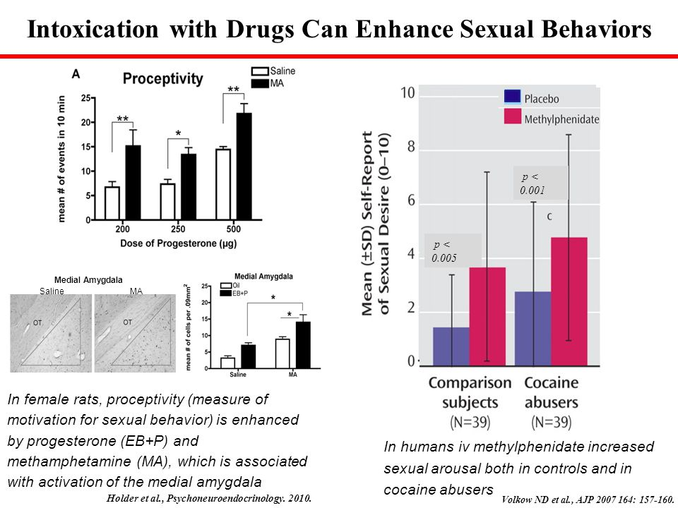 Intoxication with Drugs Can Enhance Sexual Behaviors