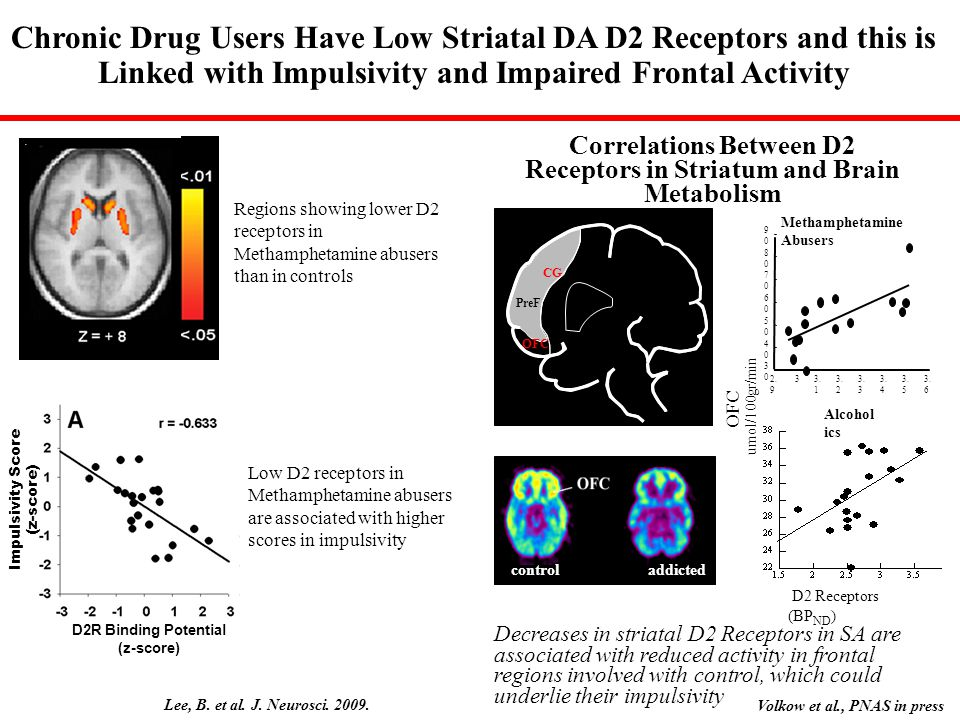 Correlations Between D2 Receptors in Striatum and Brain Metabolism