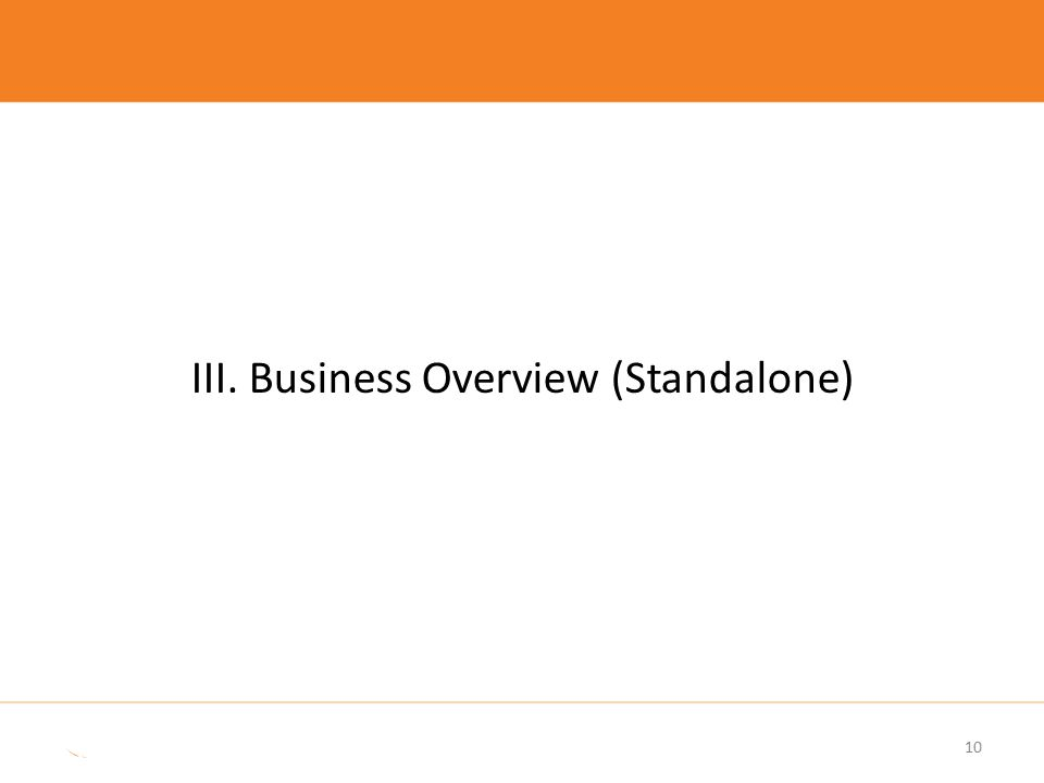 III. Business Overview (Standalone)