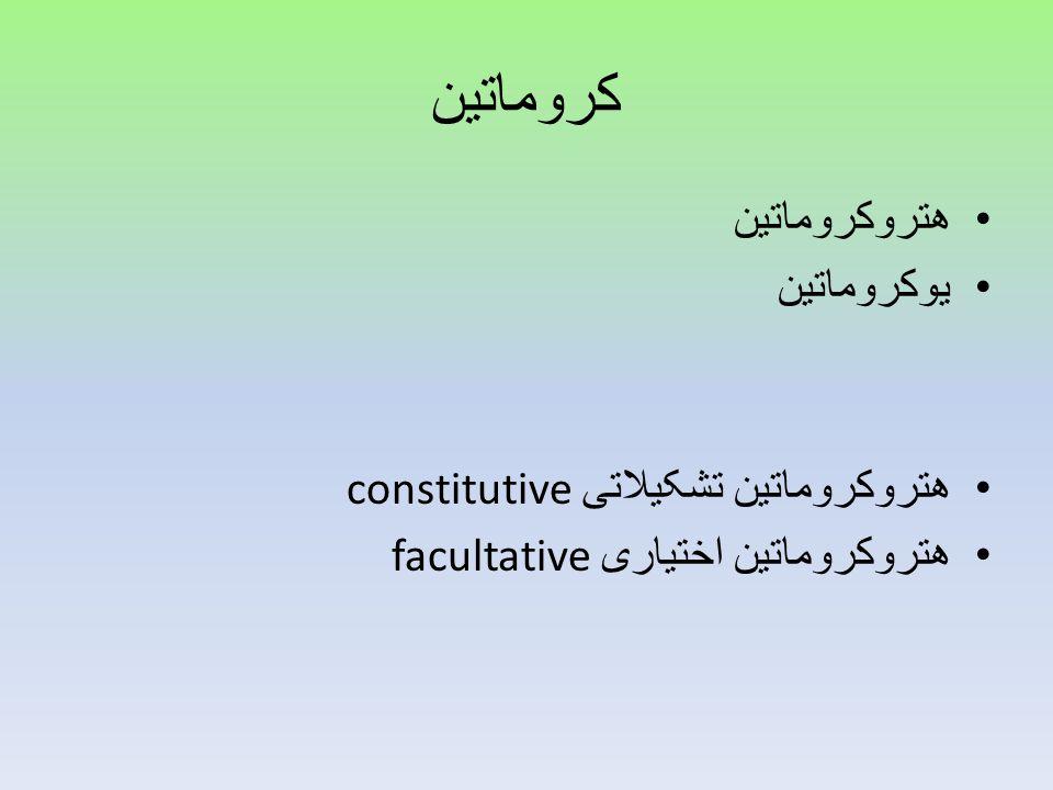 کروماتین هتروکروماتین یوکروماتین هتروکروماتین تشکیلاتی constitutive