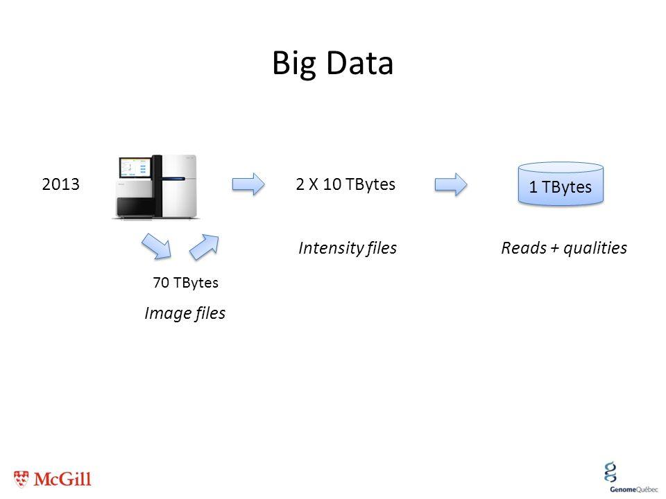 Big Data 2013 2 X 10 TBytes 1 TBytes Image files Intensity files