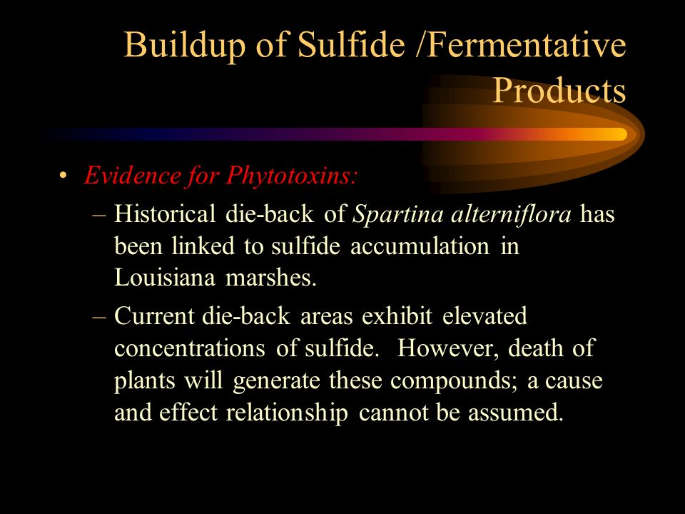 Buildup of Sulfide /Fermentative Products