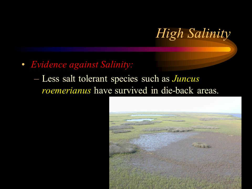 High Salinity Evidence against Salinity: