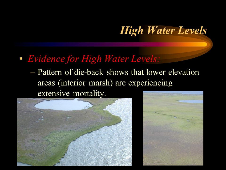 High Water Levels Evidence for High Water Levels: