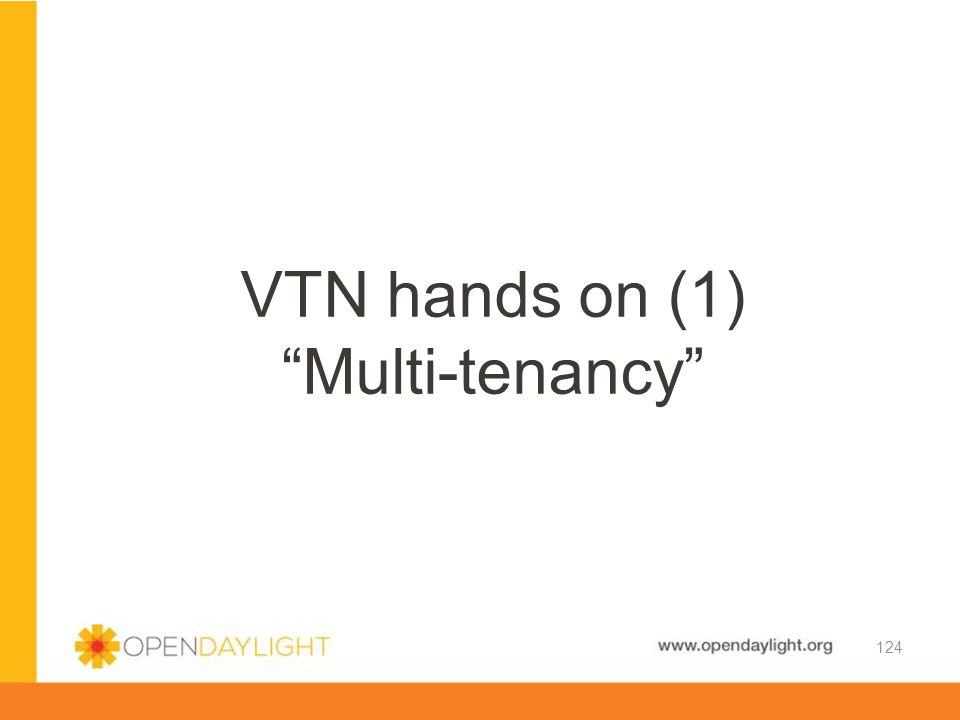 VTN hands on (1) Multi-tenancy