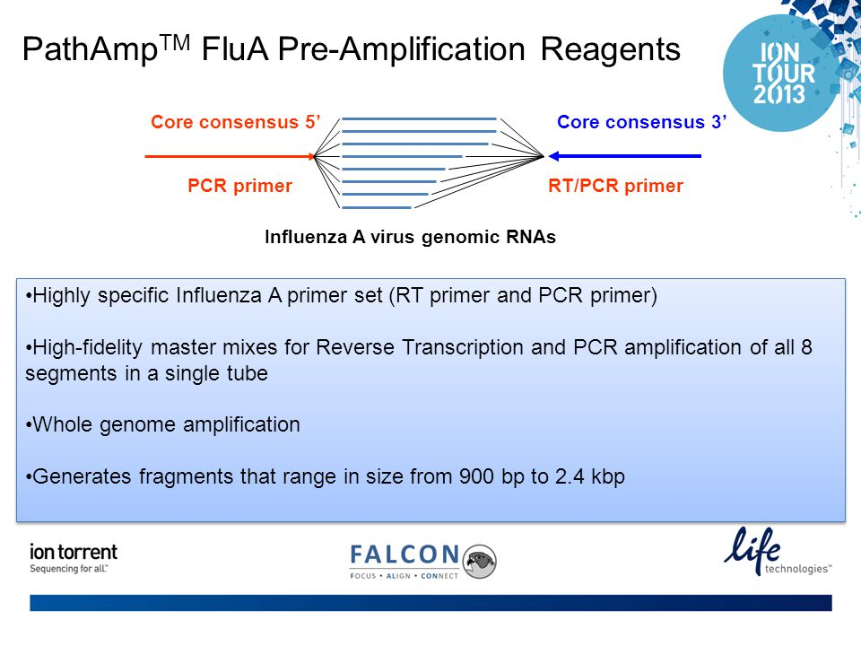 PathAmpTM FluA Pre-Amplification Reagents