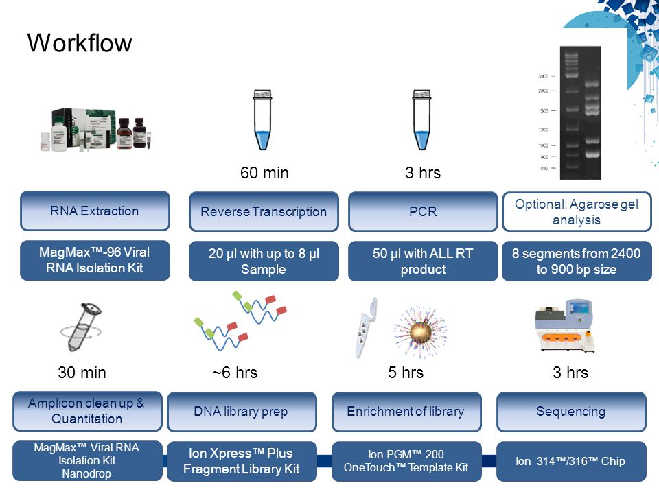 Workflow 60 min 3 hrs 30 min ~6 hrs 5 hrs 3 hrs RNA Extraction