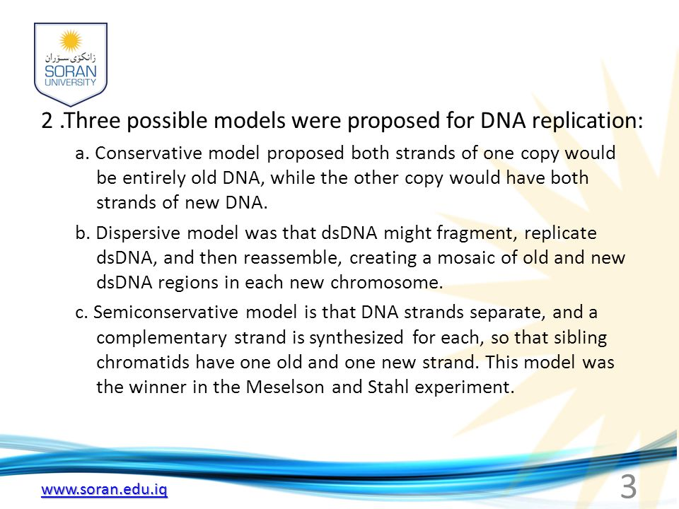 2 .Three possible models were proposed for DNA replication: