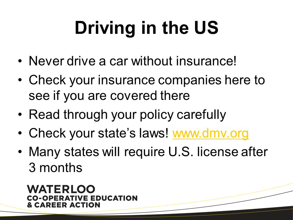 Driving in the US Never drive a car without insurance!