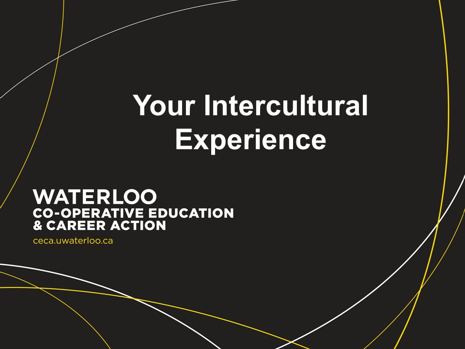 Your Intercultural Experience
