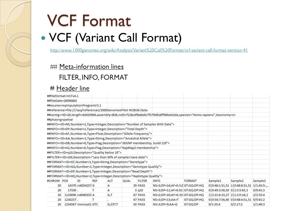 VCF Format VCF (Variant Call Format) FILTER, INFO, FORMAT
