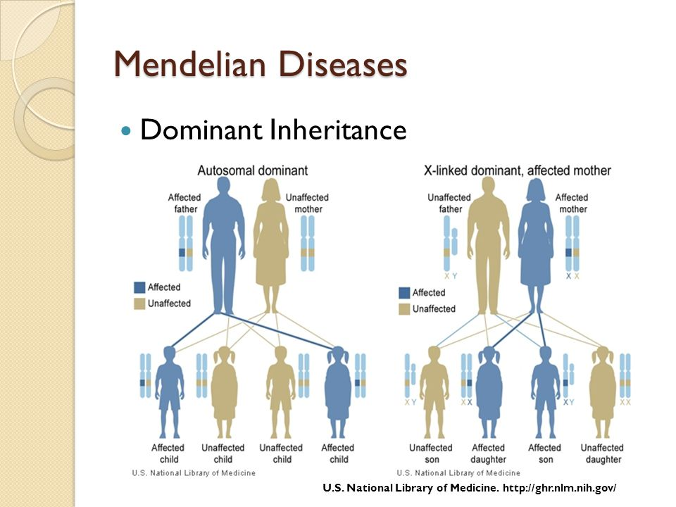 Mendelian Diseases Dominant Inheritance