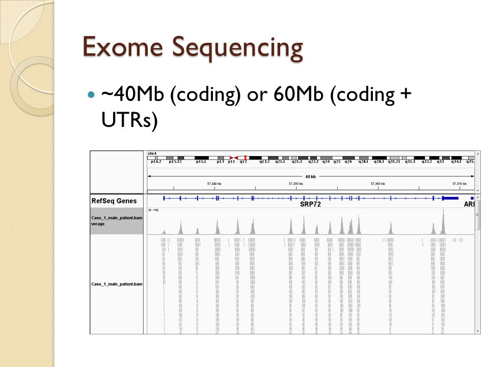 Exome Sequencing ~40Mb (coding) or 60Mb (coding + UTRs)