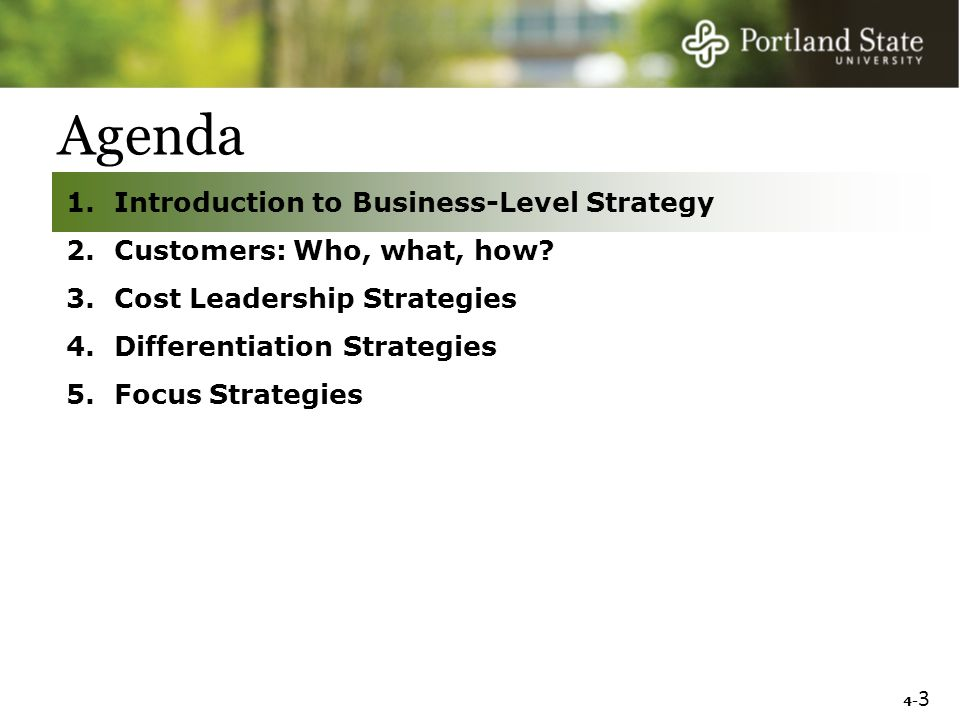 4 business level strategy Promoting a business-level strategy is an open-ended methodology that allows  for furthering the overall goals of an organization these outcomes are as varied .