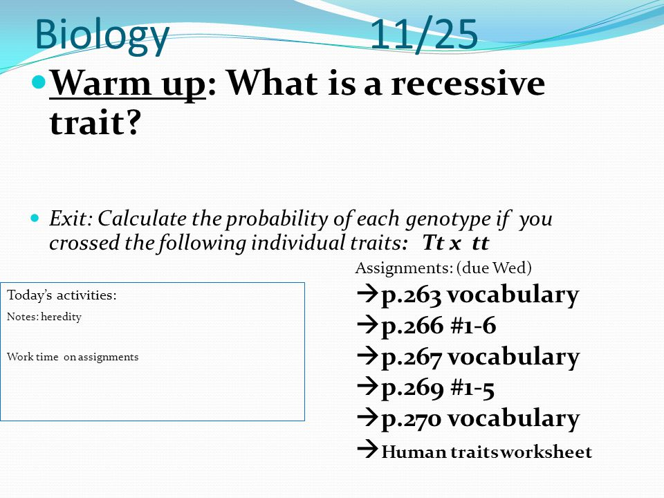 Biology 11/25 Warm up: What is a recessive trait p.263 vocabulary