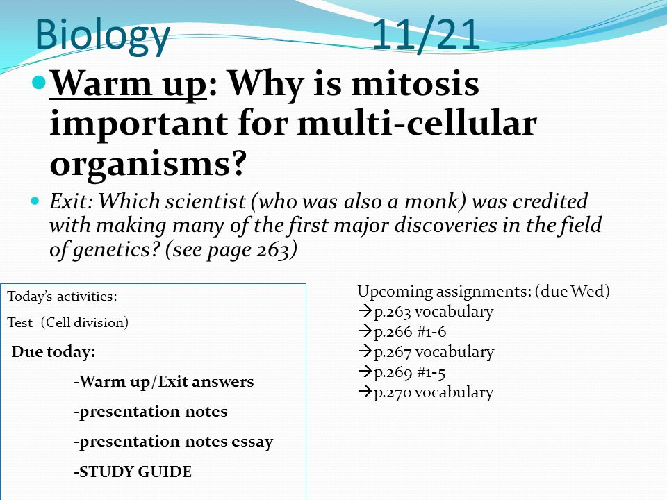 Biology 11/21 Warm up: Why is mitosis important for multi-cellular organisms