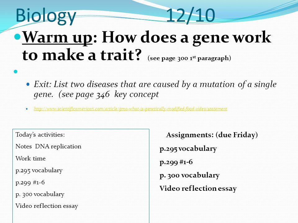 Biology 12/10 Warm up: How does a gene work to make a trait (see page 300 1st paragraph)