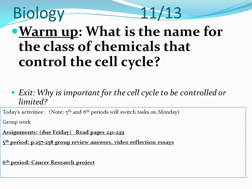 Biology 11/13 Warm up: What is the name for the class of chemicals that control the cell cycle