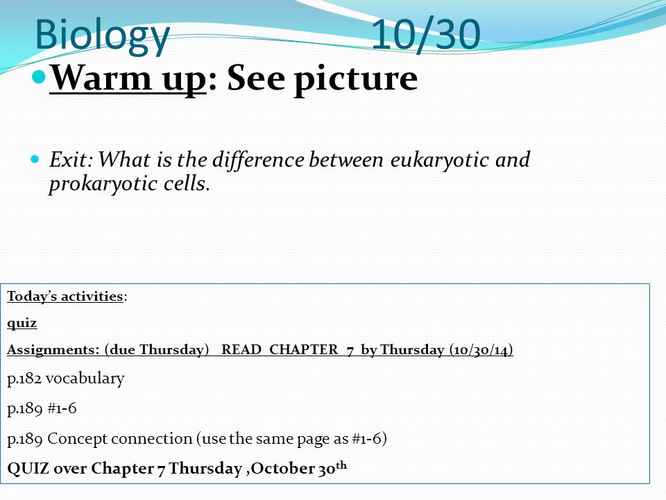 Biology 10/30 Warm up: See picture