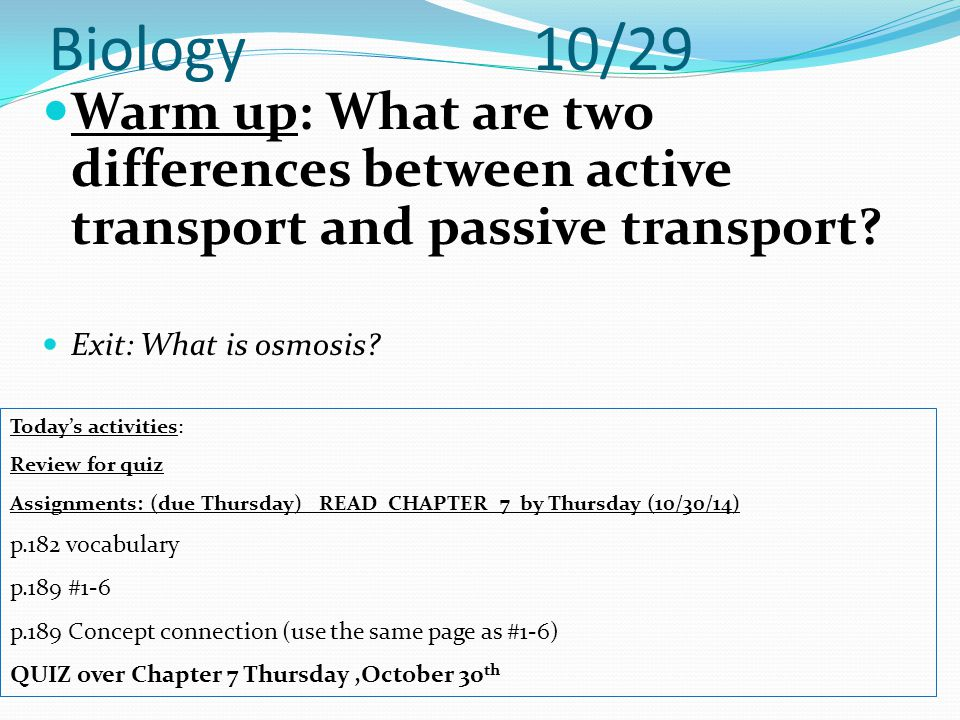 Biology 10/29 Warm up: What are two differences between active transport and passive transport