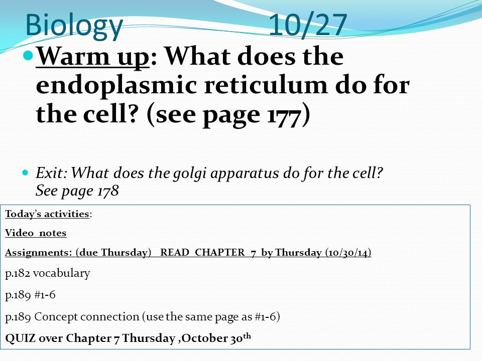 Biology 10/27 Warm up: What does the endoplasmic reticulum do for the cell (see page 177)