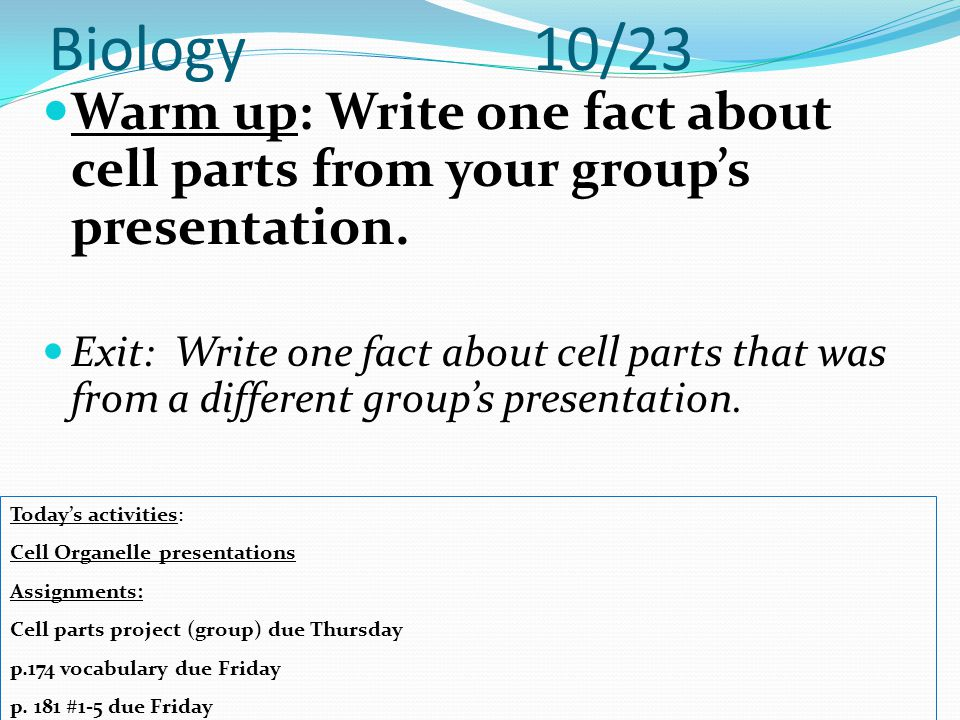 Biology 10/23 Warm up: Write one fact about cell parts from your group's presentation.